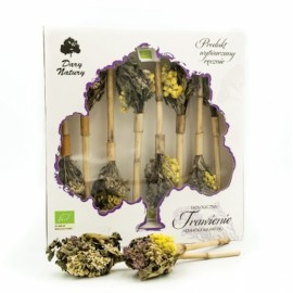 ORGANIC TEA ON STICK- DIGESTION 8x3,25G DARY NATURY